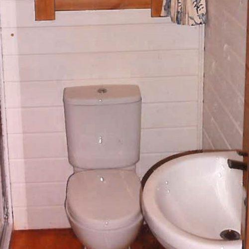 glaming-toilet-2